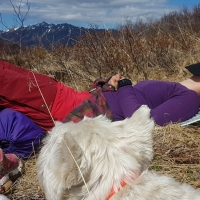 Backpacking Alaska: Resurrection Pass